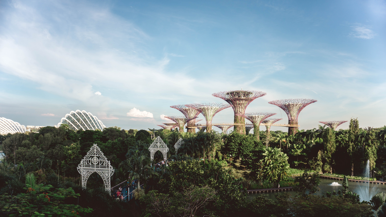 Singapore eCommerce Trends